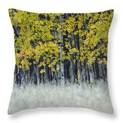 Autumn Aspen Grove Near Glacier National Park Throw Pillow