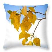 Autumn Aspen Leaves Throw Pillow