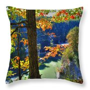 Autumn At Letchworth State Park Throw Pillow