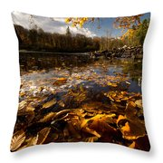 Autumn At Ragged Falls Throw Pillow