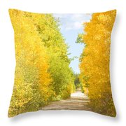 Autumn Back County Road Throw Pillow