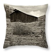 Autumn Barn Sepia Throw Pillow