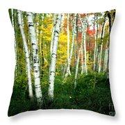 Autumn Birch Grove Throw Pillow