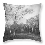 Autumn Birches Throw Pillow by Anna Villarreal Garbis