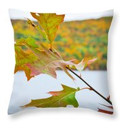 Autumn Bliss Throw Pillow