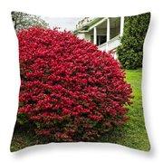 Autumn Blush Throw Pillow