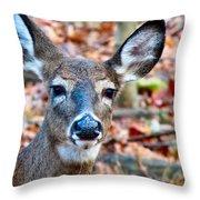 Autumn Buck Throw Pillow