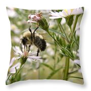Autumn Bumblebee And Flowers Throw Pillow