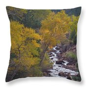 Autumn Canyon Colorado Scenic View Throw Pillow