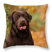 Autumn Chocolate Throw Pillow