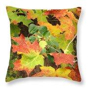 Autumn Collage Throw Pillow