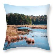 Adirondack Lake 2 Throw Pillow