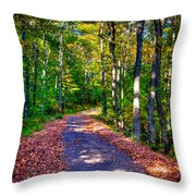 Adirondack Color 53 Throw Pillow