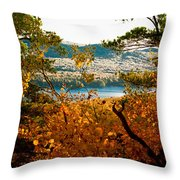 Bald Mountain View Throw Pillow