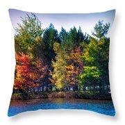 Adirondack Color 63 Throw Pillow