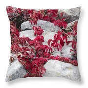 Autumn Color Is Red Throw Pillow