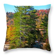 Adirondack Color P8 The White Bench Throw Pillow