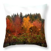 Autumn Colors In The Vineyard Throw Pillow