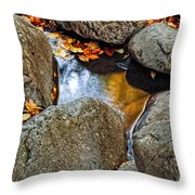 Autumn Colors Reflected In Pool Of Water Throw Pillow