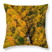 Autumn Colour And Waterfalls, Cape Throw Pillow by John Sylvester