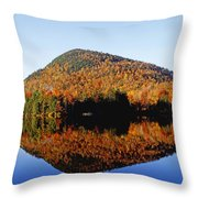 Autumn Colours Reflected In Water Throw Pillow