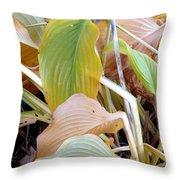 Autumn Composition Two Throw Pillow