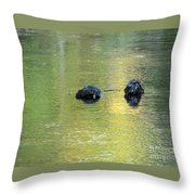 Autumn Creek Reflections Throw Pillow