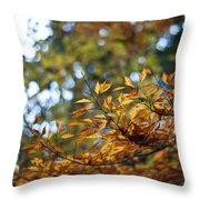 Autumn Crescendo Throw Pillow