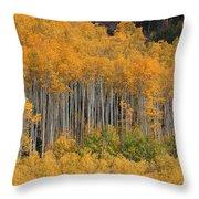 Autumn Curtain Throw Pillow