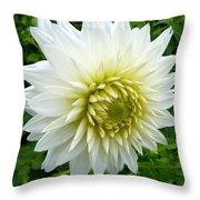 Autumn Dahlia Throw Pillow