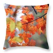 Autumn Day Dream Throw Pillow