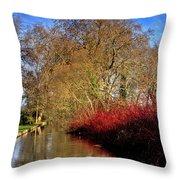 Autumn Dogwood Throw Pillow