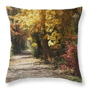 Autumn Dreams With Texture Throw Pillow