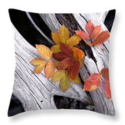 Autumn Driftwood 2 Throw Pillow