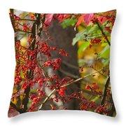 Autumn Excellence 6181 Throw Pillow