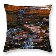 Autumn Falls 2 Throw Pillow