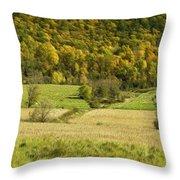 Autumn Farm Vista Throw Pillow