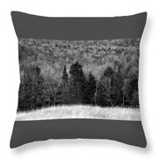 Autumn Field Bw Throw Pillow