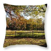 Autumn Field In Pennsylvania Throw Pillow