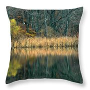 Autumn Fisherman Reflections Throw Pillow