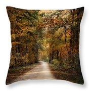 Autumn Forest 3 Throw Pillow