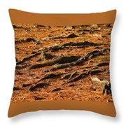 Autumn Forest Floor Throw Pillow