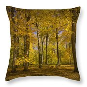 Autumn Forest Scene In West Michigan No.1140 Throw Pillow
