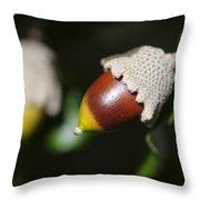 autumn fruits - Mediterranean acorn macro Throw Pillow