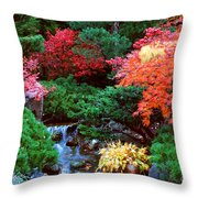Autumn Garden Waterfall II Throw Pillow