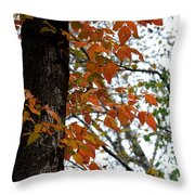 Autumn Glory At Tannehill Throw Pillow