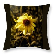 Autumn Glow 2 Throw Pillow