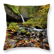 Autumn Horsetail  Throw Pillow