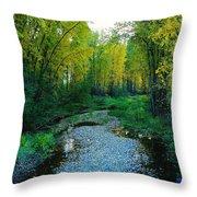 Autumn Hue  Throw Pillow