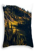 Autumn In A High Mountain Meadow Throw Pillow